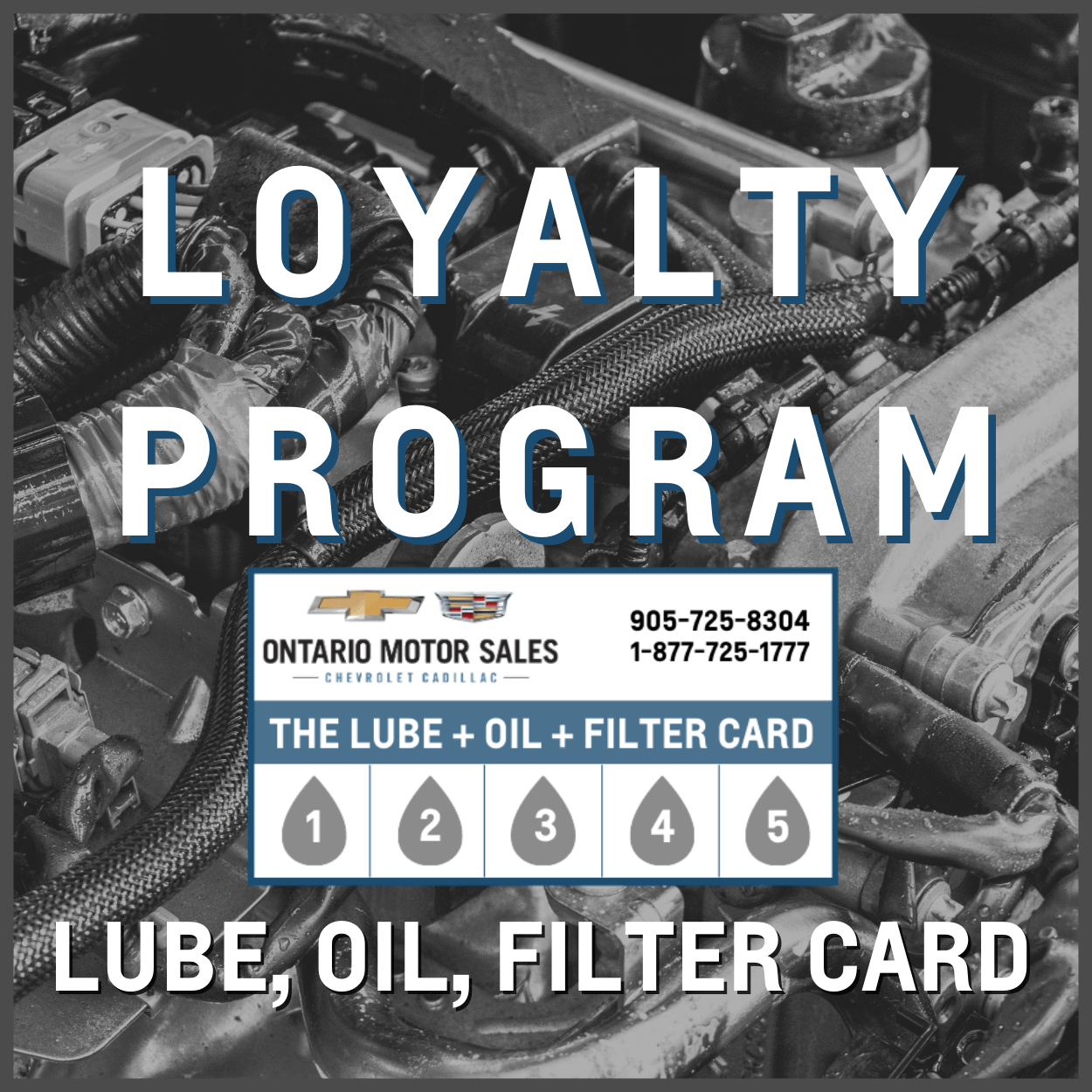 Loyalty program lube oil and filter